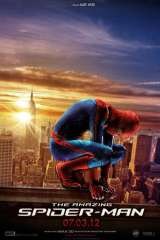 The Amazing Spider-Man poster 11