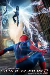 The Amazing Spider-Man 2 poster 24