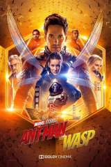 Ant-Man and the Wasp poster 13